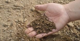 Comment fabriquer le meilleur des composts à la maison ?