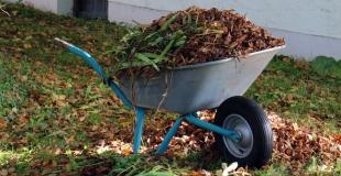 5 travaux de jardin à faire à l'automne