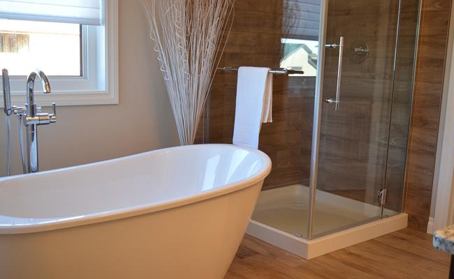baignoire et douche dans la salle de bain