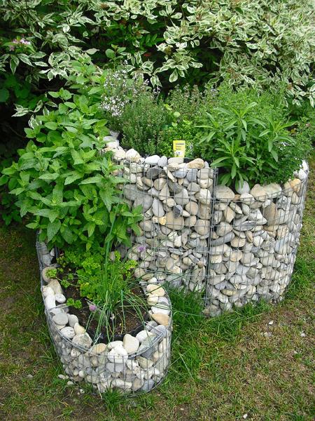 Les herbes aromatiques indispensables au jardin pour servir la cuisine - Herbes aromatiques cuisine liste ...