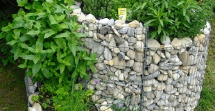 Les plantes aromatiques essentielles à avoir au jardin !