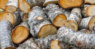 Qu'est-ce qu'un stère de bois de chauffage ?
