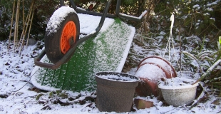 Bientôt le printemps : comment être prêt à jardiner efficacement ?