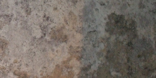 Comment lutter contre le salp tre dans une maison for Assainir maison humide