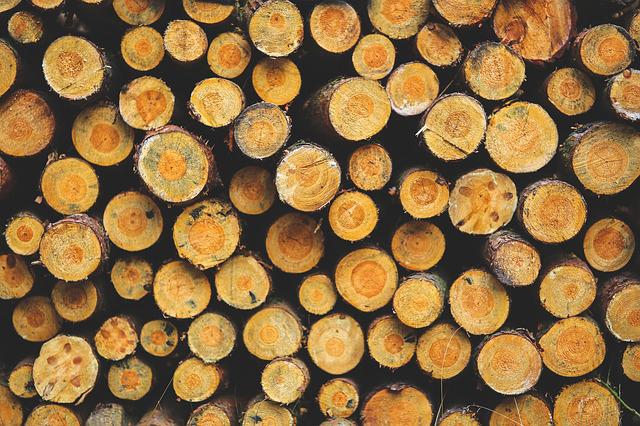 stère de bois rangé